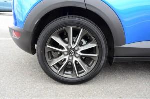 Rear disc brakes DSC_1724