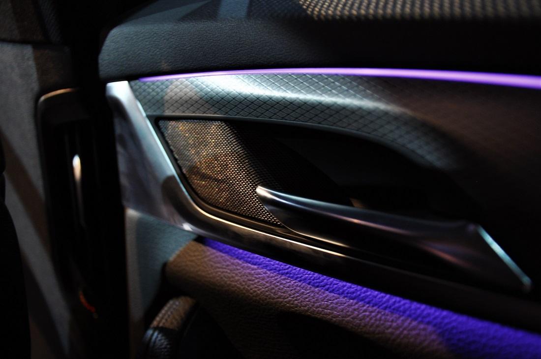 BMW 530i M Sport G30 Rear Door Handle Interior - Autoworld