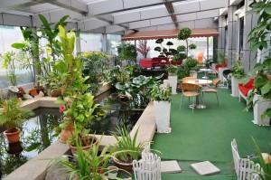 Mercedes-Benz NZ Wheels Klang Autohaus Indoor Garden, Malaysia 3S Centre