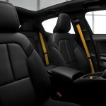 Polestar 2_Gold Seat Belts