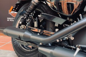 Harley-Davidson Iron 1200_Motorcycle_Muffler_Malaysia