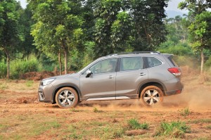 Subaru Forester_Off Road_Hard Braking