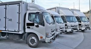 Hino 300_Light Duty Truck_Malaysia