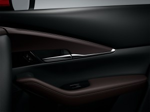 2019 Mazda CX-30_Door Card_Trim