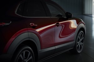 2019 Mazda CX-30_Body Panel_Doors_Reflection