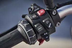 BMW Motorrad_F 900 R (11)_Handlebar_Controls