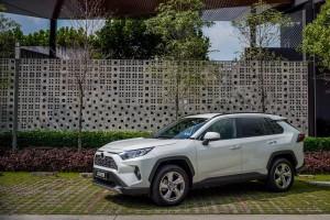 Toyota RAV4_White Pearl CS