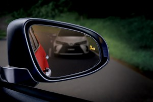 Blind Spot Monitor (BSM)